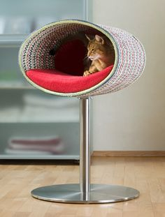 Designer furniture for cats