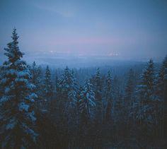 moody snow scene