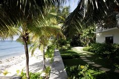 Barefoot Beach, Long Beach, Rum, Beaches, Sidewalk, Island, Projects, Walkway, Block Island