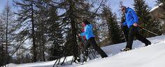 Skiurlaub Goms | Winterferien Goms | Ferienwohnung | Chalet | Hotel | Familienfreundlich | Familie | Ferien | Winterurlaub Ski Holidays, Skiing, Outdoor, Sport, Design, Ski Trips, Winter Vacations, Ski, Outdoors