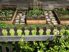 Love these raised beds with the stone paths in between