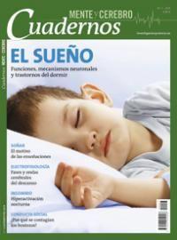 Un estudio sobre la relación de la materia gris y la apnea del sueño en niños que puede sufrir, en consecuencia, pérdidas cognitivas en su desarrollo.
