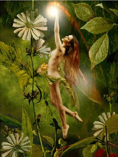 Bad Fairies and Pixies | Fairies are unbaptized souls. They are souls caught up in a netherland ...