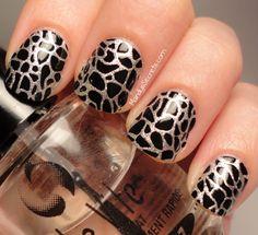 Giraffe Nails   Looking FANCY