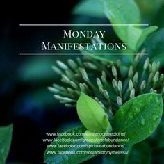 Monday Manifestations! What are you wanting to create today? The more you share, speak about, or give voice to your desires, the more powerful they become. Leave a sentence or even just one word to describe what you want to create today or for this week for yourself!