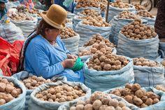 In the market in La Paz, Bolivia