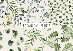 Botanical Pack Seamless Patterns by Annet Weelink Design on @creativemarket