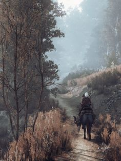 The path ahead The Witcher 3: Wild Hunt