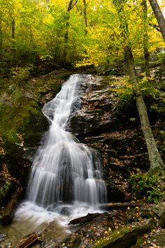 NFF Blog: Fifteen National Forest Waterfalls Not to Miss