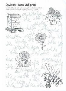 Opylování-včelí práce