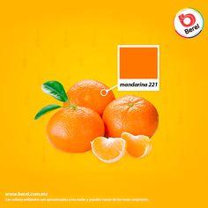 ¿Mandarina en la sala? Este color es favorable para ambientes sociales o puntos de reunión, consulta este color en tu cartilla Berelex. #Hogar #Home #Decoracion