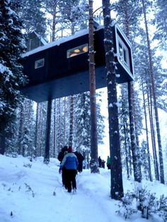 The Treehotel in Swedish Lapland - The Cabin