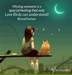 Only Love birds can understand that special feeling! Love Me Quotes, Romantic Love Quotes, Mood Quotes, Online Flower Delivery, Online Florist, Cute Love Cartoons, Gift Cake, Send Flowers, English Quotes
