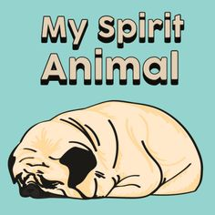 this is the best spirt animal ever