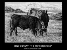 The Mother Breed- Artist Dino Cornay - Pencil Artwork Animal Drawings, Art Drawings, Pencil Drawings, Cow Decor, Show Cattle, Cow Art, Western Art, Livestock, Pencil Art