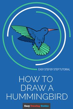 How to Draw a hummingbird Drawing Tutorials For Kids, Pencil Drawing Tutorials, Drawing For Beginners, Art Tutorials, Animal Drawings, Pencil Drawings, Hummingbird Sketch, Bird Paintings On Canvas, Drawing Lessons