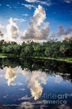 Green Cay Reflections 4 photograph by Nancy L. Marshall - Green Cay Reflections 4 Fine Art Prints and Posters for Sale #FineArtAmerica Sunrise at Green Cay Wetlands, Boynton Beach, Florida.