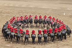 The Musical Ride seen daily at the Calgary Stampede