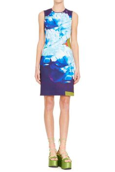 Clover Canyon - Classic Sheath Dress in Urban Blooms: Neoprene Body Con Sheath Dress with Center Back Zipper