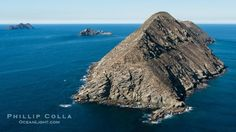 Aerial Photos of Islas Coronado, the Coronado Islands, Baja California Baja California, Coronado Island, Travel Ideas, Underwater, Exotic, Beautiful Places, To Go, Places To Visit, Mexico