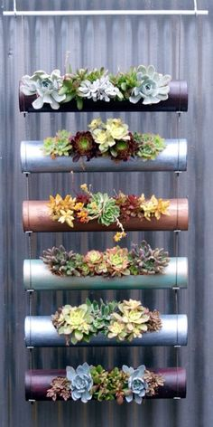 diy garden ideas Vertical gardens are a great way to create micro gardens either indoors or out, and can be used to grow all sorts of plants. Here are the 11 Best Ideas. Hanging Succulents, Cacti And Succulents, Succulent Planters, Succulent Display, Succulent Ideas, Diy Planters, Fence Planters, Succulent Gardening, Succulent Containers