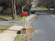 Look for the ladybug mailbox is all the direction people need to find us.
