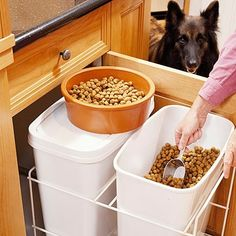 Pet Food Storage Cabinet Built Ins 50 Ideas Food Storage Cabinet, Pet Food Storage, Kitchen Storage, Hidden Storage, Storage Jars, Smart Kitchen, Smart Storage, Storage Cabinets, Food Dog