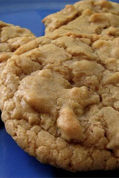 Chewy Maple Cookies- reduce both sugars by a bit, reduce salt by a bit and add chocolate chips. Cookie Desserts, Just Desserts, Cookie Recipes, Delicious Desserts, Dessert Recipes, Yummy Food, Fall Desserts, Candy Recipes, Recipes