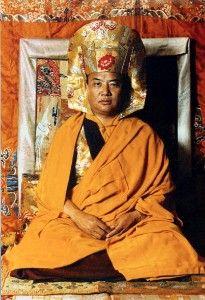 H.H. the 16th Karmapa Rangjung Rigpe Dorje.