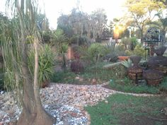 """See 3 photos and 1 tip from 1 visitor to Landscaping. """"Try Designer Gardens if you need a garden landscaped. They also do koi ponds, swimming pools"""" Koi, Garden Landscaping, Stepping Stones, Swimming Pools, Garden Design, Gardens, Patio, Landscape, Outdoor Decor"""