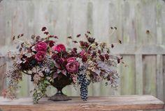 1-max gill flowers -november-silvana difranco photo