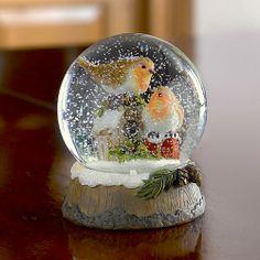 Robin snowglobe