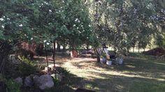 Mój zaczarowany ogród