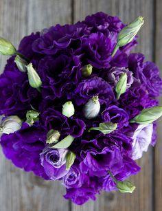 Charmed, I'm Sure Flower Arrangement