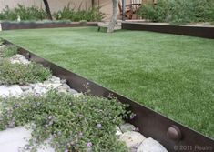 Designing a safe and welcoming dog yard