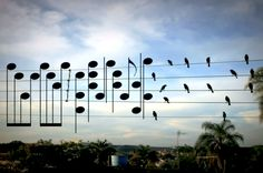 """What would happen if birds perched on electrical wires were transformed into musical notes? How would their position in space translate sonically? Those were the questions Jarbas Agnelli asked one day.""""I saw this picture of birds on the electric wires,"""" said Jarbas.""""I cut out the photo and decided to make a song, using the exact location of the birds as notes. I was just curious to hear what melody the birds were creating."""" The stunning final result can be seen here:     source source"""