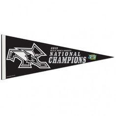 WinCraft Penn State Nittany Lions Premium Felt Pennant Vintage Retro Graphics 12 x 30 inches