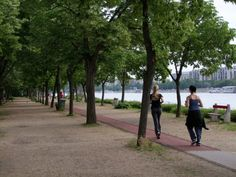 Budapest - Margaret Island - One of Many Awesome Suggestions on 27 Degrees, Visit our Website by Clicking the Image Above Hungary, Budapest, Sidewalk, Island, World, Awesome, Green, Image, Website