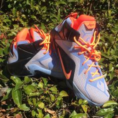 brand new 613c2 035f9 Nike Shoes   Nike Lebron James   Color  Black   Size  6b