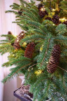 Weihnachtsbaum dekorieren Weihnachtsbaumschmuck basteln ganz natürlich aus Zapfen selbermachen. Tannenzapfen basteln. DIY selbstgemacht für Weihnachten aus Naturmaterialien