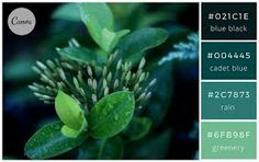 Image result for nature color palette