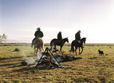 Three drovers with their dogs at, Hay, New South Wales.