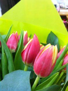 Ramo de tulipanes bicolor