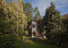 Baita in legno nella foresta ungherese, studio T2.a Architects e fotografo Zsolt Batar