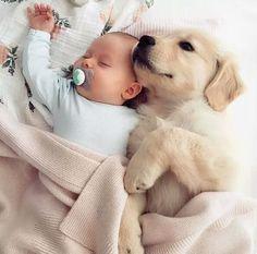 Mundo dos Bebês