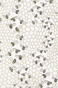 Bee Colony Wallpaper