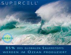 85% des globalen Sauerstoffs werden im Ozean produziert jendrusch.com