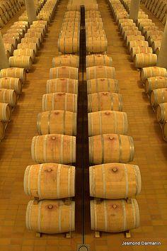 """Donna Fugata"" wine cellars in Ragusa, Sicily Olives, Beer Calories, Wine Searcher, Wine Vineyards, Sicilian Recipes, Sicilian Food, Wine Guide, Wine Deals, Vitis Vinifera"