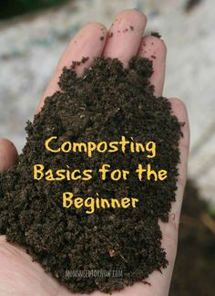 Composting is nature's way of taking waste and turning it into nutrient-rich soil that makes a great amendment to your garden soil (especially if you are sq