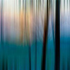 Judith Gilbert, Motion # 1 - Sunset at reservoir through trees, Dorfen, Germany